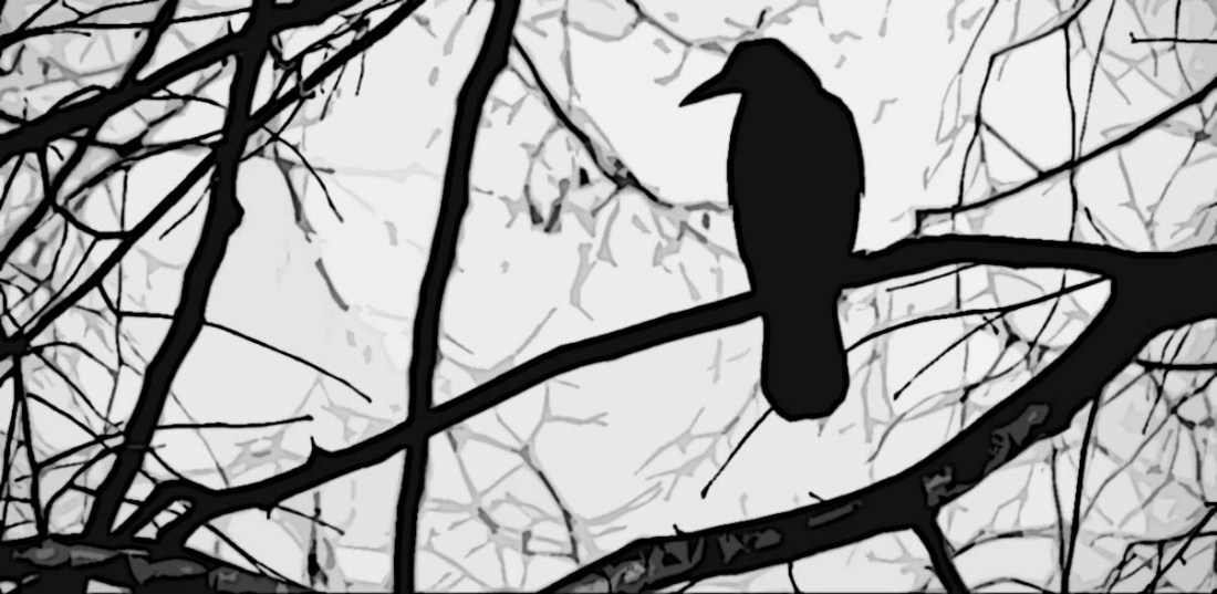 crow on a withered branch basho