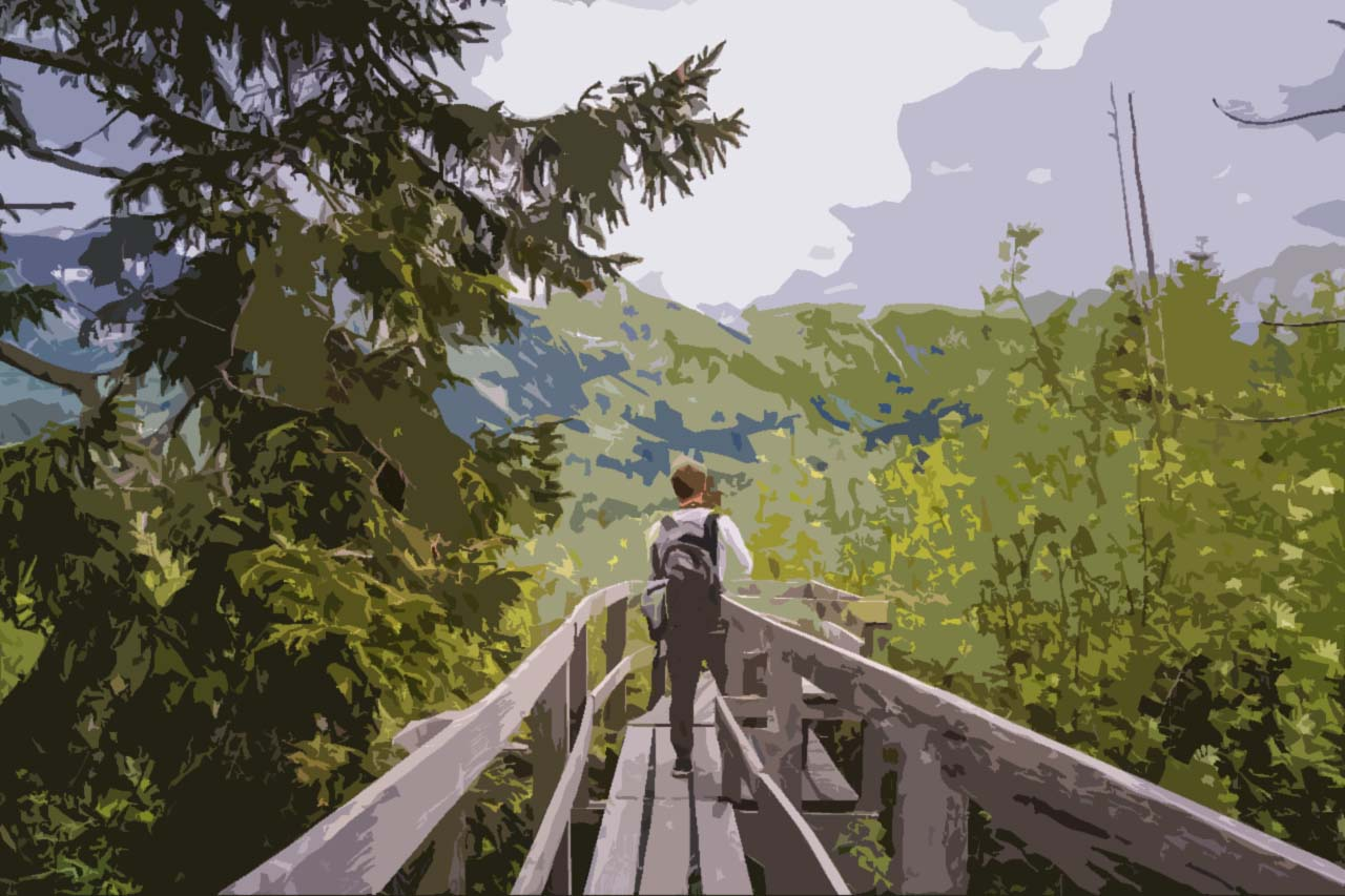 hike-boardwalk
